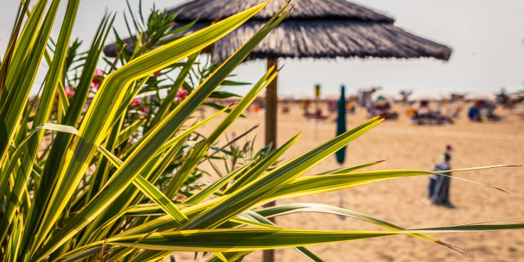 Weather in Bibione, a pleasant climate all year round thumbnail