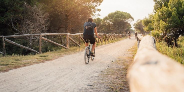 Biking trails in Bibione: all the itineraries for a bike ride in the middle of nature and in safety thumbnail