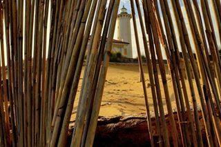 Ogni volta che vado al faro di Bibione cerco sempre dei punti da dove poterlo fotografare. . . . #bibionebeach #bibionecom #visitbibione  #veneto #bibione #farodibibione #colors #volgoveneto #prospettive #landscape #igersveneto #photography #nature #ig_veneto #loves_veneto #new_photoveneto #yallersveneto #visitveneto