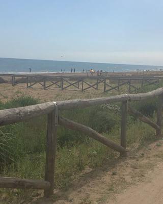 Una corsa in bici tra verde e mare, nella tranquillità più totale, perdendosi con lo sguardo e con la fantasia. Solo a Bibione. #bibione #visitbibione #holiday #bibione2017 #summer #summer2017 #Sommer2017 #sommer #bike Ein Fahrradfahrt zwischen grün und Meer, in der gesamten Ruhe, sich mit Blick und Phantasie verlierend. Nur in Bibione. A bike ride between green and sea, in total tranquillity, losing yourself with the look and imagination. Only in Bibione.