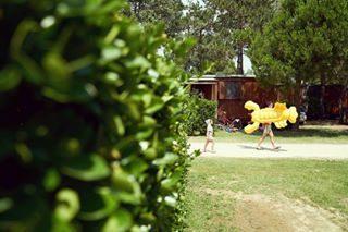 🔸 Are you ready to spend your summer lying in the sun? 🔸 ☀️🌼☀️ . . . #campinglido #camping #campeggio #campingplatz #beach #strand #spiaggia #mare #vitadamare #keepexploring #adventure #travel #landscape #wanderlust #openairholiday #bibione #visitbibione #bibione2018 #italia #visititaly #italianholiday #italiandays #bestvacations #adriatic #adriaticcoast
