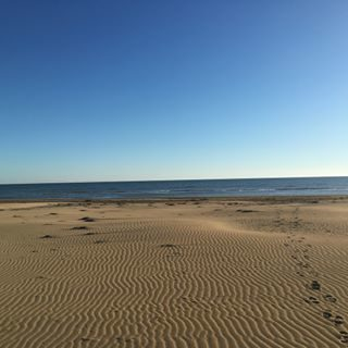 Una giornata splendida in questo novembre, passeggiando in riva al mare! #visitbibione #bibione17 #bibione #beach #walkingonthebeach #passeggiandosullaspiaggia #natura #autunno #autumn #mare #sea