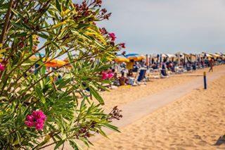 Le vacanze pasquali sono terminate, ma niente paura: si avvicina il periodo dei ponti: 25 Aprile e 1 Maggio sono alle porte. Bibione vi aspetta per l'inizio della stagione! #bibione #visitbibione #bibione2017 #holiday #beach #spiaggia #vacanze #mare #sea Die Osterferien sind vorbei, aber keine Sorge: jetzt kommen die lange Wochenende: 25. April und 1. Mai sind vor den Toren. Bibione wartet auf Sie für den Beginn der Saison! The Easter holidays are over, but don't worry: the period of the long weekends is coming: 25th April and 1st May are upon us. Bibione waits for you for the season start!
