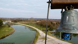 A dive into nature to observe, breathe and relax in a place where biodiversity reigns supreme. 📷 😎 . . . #bibione #bibionebeach #wildnature #naturephotography #shots#myhobby #mypassion #panasoniclumix #discoverbibione #valgrande #goodvibes #photo #picoftheday #visitbibione #visitveneto #naturashot #Italy #igersitalia #igersbibione #like4like #likeforlike #instagood #yallersveneto #bibione_info #photographer